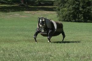 робот зверь в россии